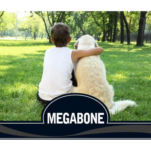 5.PICART  MEGABONE